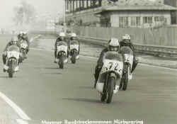 rothbrust-1971-suedschl-1.jpg (45109 Byte)