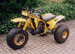 1992-yamaha-trike.jpg (113907 Byte)
