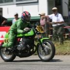 Green Frog 030